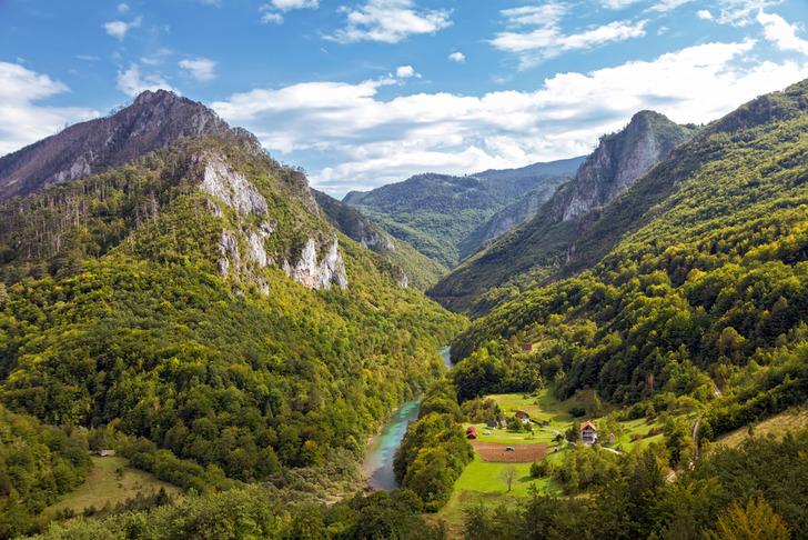 Земля в черногории недвижимость в дубае с гарантированным доходом