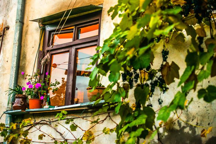 Тбилиси купить квартиру продажа недвижимости за рубежом